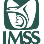 imss-logo25