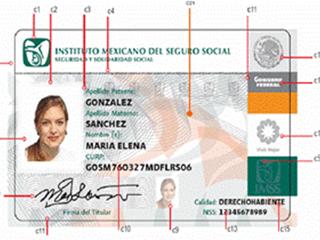 Credencial del IMSS